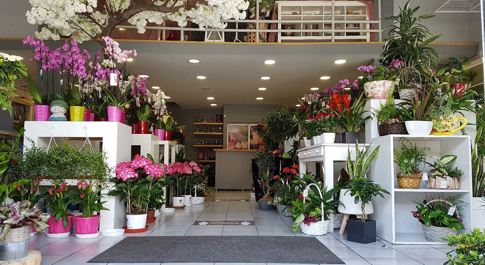 anthemionflowers_store